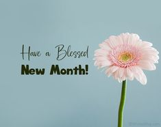 Happy New Month Images, Happy New Month Messages, Happy New Month Quotes, New Month Wishes, Message For Best Friend, Message For Girlfriend, Girlfriend Quotes, Wishes For Friends, Never Lose Hope