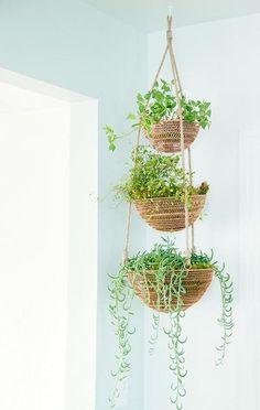Diy Hanging Planter, Indoor Planters, Diy Planters, Planter Ideas, Basket Planters, Plants Indoor, Indoor Hanging Baskets, Hanging Pots, Hanging Baskets Kitchen