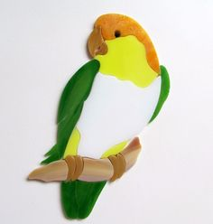 White bellied Cauique Parrot. Beautiful addition to your mosaic project.  #RachelKratzer