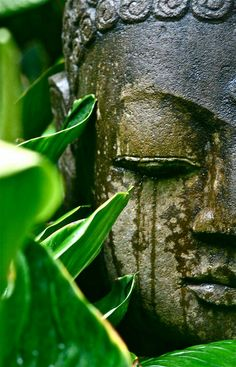 Envers du Decor — buddhabe: Buddha in Bali - Garden Statue Art Buddha, Buddha Zen, Buddha Buddhism, Buddhist Art, Little Buddha, Art Asiatique, Ganesha, Belle Photo, Namaste