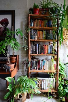 An Indoor Jungle Grows in a Brooklyn Apartment (love the shelving with plants on top)