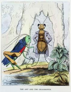 E você é uma cigarra ou uma formiga? Pegue aqui a dica para o personagem que você se identifica mais.