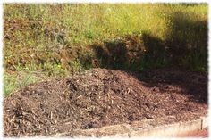 Elementos ricos en minerales y aminoacidos Fukuoka, Compost, Plantar, Country Roads, Organic Matter, Tree Planting, How To Build, Permaculture, Vegetable Garden