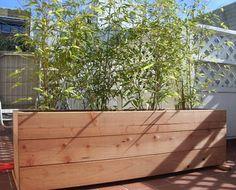 Bamboo Planter-day, via Flickr.