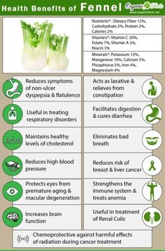 Health benefits of fennel include anemia, indigestion, flatulence, constipation, diarrhea due to its high nutritional value. Fennel also has varied uses. Benefits Of Fennel, Calendula Benefits, Lemon Benefits, Coconut Health Benefits, Benefits Of Juicing, Foeniculum Vulgare, La Constipation, Tomato Nutrition, Nutrition Tips
