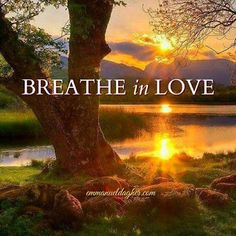 BREATHE in LOVE ༺❁༻