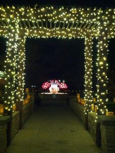 Spectacular Light Display In Wichita Local News Home Lights On  - Christmas Lights Wichita Ks