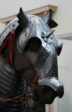Knight's Horse?