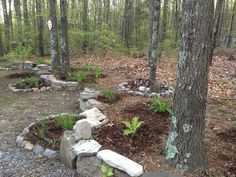 a rock wall garden on the side of my home in Capon Bridge, WV. Rock Wall Gardens, Stuff To Do, Things To Do, The Neighbourhood, Garden Ideas, Bridge, Beautiful Places, Exterior, Outdoor Decor