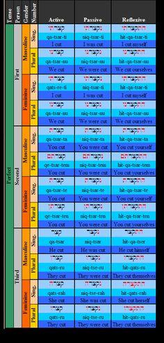 Learn Hebrew - 16 #learnhebrew
