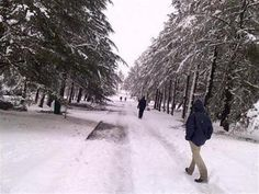 MUST SEE: Selfies of KZN residents enjoying weekend snow - Newcastle Advertiser Snow Report, Newcastle, Selfies, South Africa, Travel, Outdoor, Xmas, Outdoors, Viajes