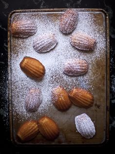Honey Madeleines - ZoeBakes