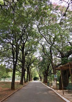 Parque Carlos A López de Asunción-Paraguay
