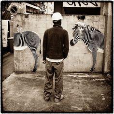 Une street artist colle des animaux sauvages dans les rues de Paris… (image)