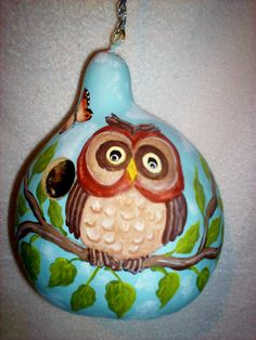 Whimsical Owl and Butterfly Sky Blue Painted Gourd birdhouse Garden Yard/Art
