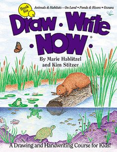 Thoughts from author on editing—Draw-Write-Now, Book 6—Draw Your World