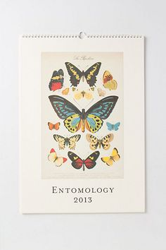 entomology wall calendar anthropologie  $21.95.. honey will you buy me this for Christmas please??