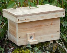 If you've made or purchased a bumble bee box, you are probably wondering where to put it and how to attract tenants. I've scanned dozens of documents looking for the secret formula and learned that...