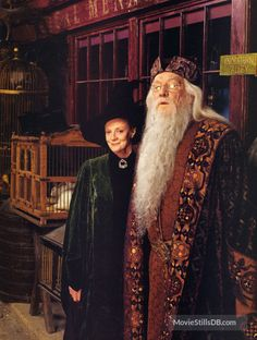 Harry Potter and the Sorcerer's Stone - Promo shot of Richard Harris & Maggie Smith Harry Potter Glasses, Harry Potter Films, Harry Potter Outfits, Harry Potter Universal, Harry Potter World, Harry Potter Hogwarts, Gellert Grindelwald, The Sorcerer's Stone, Maggie Smith