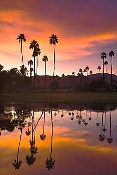 Palm Springs - California…