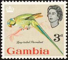 Rose-ringed Parakeet stamps - mainly images - gallery format