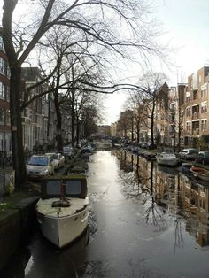 Icy canals of Amsterdam