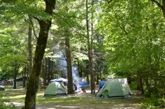 camping in the smokie moutains | Camping in Deep Creek, Great Smoky Mountains National Park