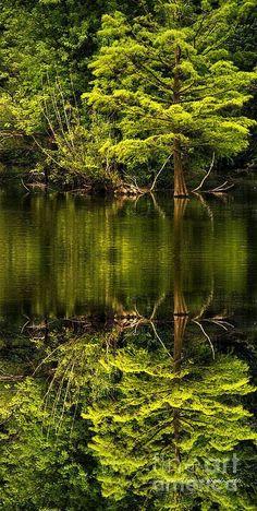 Indian Lake Reflections - Illinois, USA