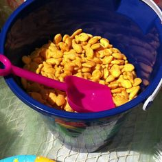 Gold fish in a beach pail with shovel. So cute!
