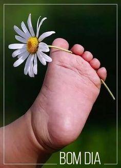 flowers love - Google+