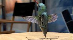 Hummingbird robot revealed in US (BBC)