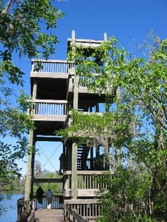 Observation Tower at lettuce park. Visit for a beautiful wildlife experience.