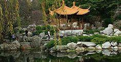 Chinese Plants, Pond, Image, Water Pond, Garden Ponds