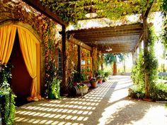 Caymus Vineyards at Napa Valley