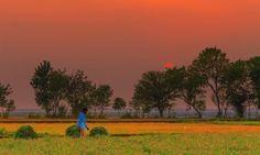 Awesome beauty wonderful photography of Sunset ☀ beauty at village near Head marala Punjab Pakistan Pakistan Tourism, Pakistan Travel, Tourist Places, Tourist Spots, Beautiful Sunset, Beautiful Places, Punjab Culture, Village Photography, Nature Photography