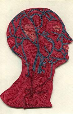 Quilled Paper Anatomy by Sarah Yakawonis