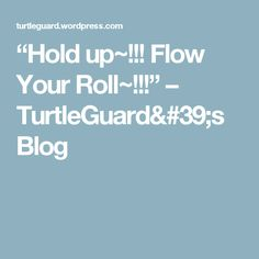 """""""Hold up~!!! Flow Your Roll~!!!"""" – TurtleGuard's Blog"""