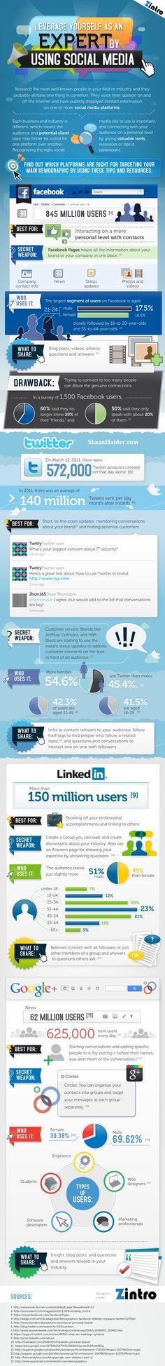 How To Use Social Media To Showcase Your Professional Expertise (Infographic)