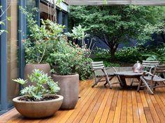 Flowering quintal of 100 m² and lazer area not ground floor Rooftop Garden, Balcony Garden, Garden Planters, Indoor Garden, Indoor Plants, Outdoor Gardens, Big Planters, Back Gardens, Small Gardens