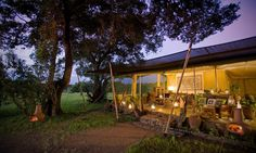 Kicheche Mara Camp | Safari Kenia