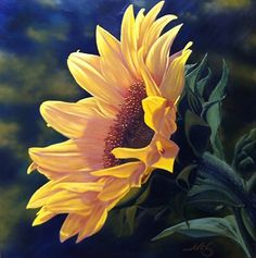 Sunflower by Curt Ives Oil ~ 36 x 36