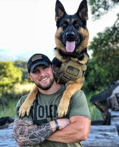 Learn to train your dog even an adult on video – German Shepherd, large dog, guard dog Military Working Dogs, Military Dogs, Police Dogs, Military Soldier, Future Soldier, Female Soldier, Military Veterans, War Dogs, Men In Uniform