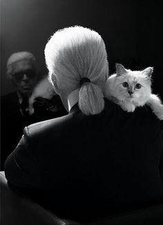 Karl Lagerfeld debuts his newest muse: his Birman kitten, Choupette.
