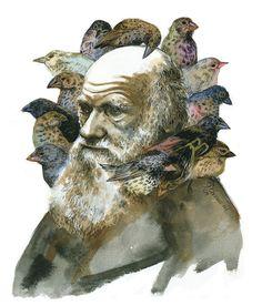 Charles Darwin with Finches portrait print- jumbo, via Etsy.