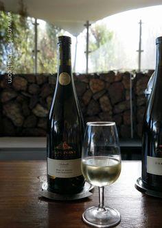 Wine Tasting in Cape Point Vineyards - Isliedh 2015.