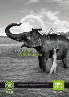 NO + VELLO Campaña publicidad   ADVERTTY