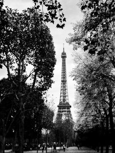 Eiffel Tower Paris Black and White Photo Print 12x18 Multiple Sizes