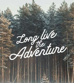 Long Live The Adventure -From@chrishenrydesign . . #pixelsurplus #typography #type #dailytype #thedailytype #typelove #typedesign #graphicdesigns #graphicdesigners #typeeverything #inspiration #handlettering #handdrawn #designer #design #calligraphy #quote #quotes #quoteoftheday #fb #typespire #typegang #goodtype #illustration #handlettered #designers #lettering
