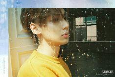 Kwangmin - Boyfriend