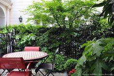 Une terrasse avec table de repas, abritée par des arbustes verdoyants.